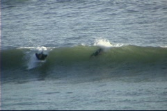 A man successfully surfs across a small wave. Stock Footage