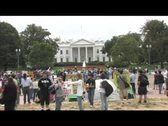 Long-shot protestors demonstrating on the White House lawn in Washington, DC Stock Footage