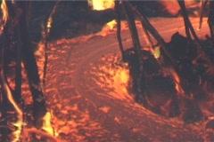 Lava flows through trees. Stock Footage