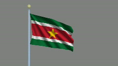 Flag of Suriname  Stock Footage