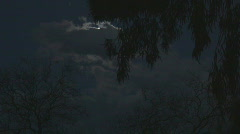 Bright spring moon lights up the eeriness. Stock Footage
