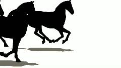 Monet hevoset siluetti Arkistovideo