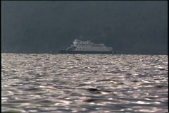 Water laps on lakeshore Stock Footage