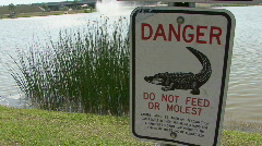 Do Not Feed Or Molest The Gators Stock Footage
