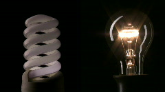 Traditional and energy saving light bulbs.  - stock footage