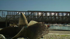 Propellor, Bridge, People And Pets Stock Footage