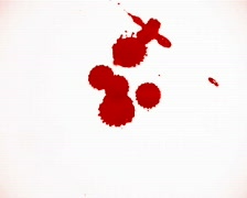 Blood splats isolated on white Stock Footage