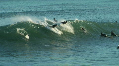 Surf And Backflop! Stock Footage