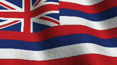 Hawaii state flag - seamless loop Stock Footage