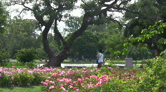 Walk at the rose park Stock Footage