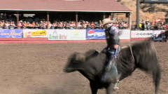 Rodeo bull ride 3 Stock Footage
