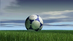 Soccer ball on grass day Stock Footage