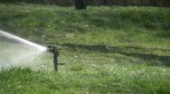 Grass sprinkler Stock Footage