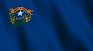 Nevada state flag - seamless loop Stock Footage