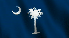 South Carolina state flag - seamless loop Stock Footage