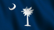 Stock Video Footage of South Carolina state flag - seamless loop