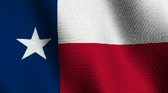 Texas state flag - seamless loop Stock Footage