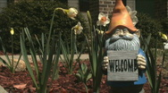 Gnome and flowers Stock Footage