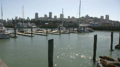 Panoramic Sea Lions at Pier 39, San Francisco Stock Footage