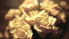 White Roses Stock Footage
