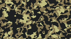 Camouflage Stock Footage