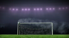 Score a goal in gate and celebrating - stock footage