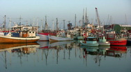 Stock Video Footage of Fishing port