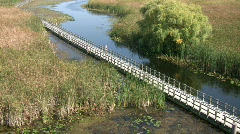 Boardwalk winds it way through the Canadian wetlands (High Definition) Stock Footage