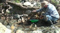 Prospector, miner, gold panning Stock Footage