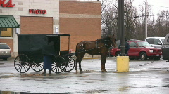 Amish Horse Buggy Stock Footage