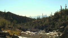 Hiker in desert landscape - HD  Stock Footage