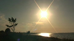 Ocean Landscape with Tree and Sunset Stock Footage