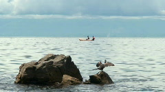 Malawi: african fishermen and a bird Stock Footage