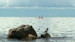 Malawi: african fishermen and a bird 2 Stock Footage