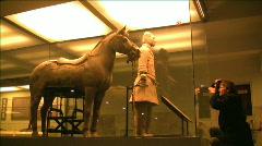 Xian Tomb of the Terracotta Warriors 6 - stock footage