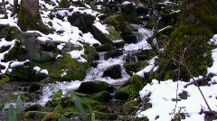Melting spring snow flowing down mountain side with sound Stock Footage