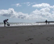 Stock Video Footage of Stroll on the Beach 2