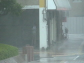 Hurricane Winds Lash Person On Street Stock Footage