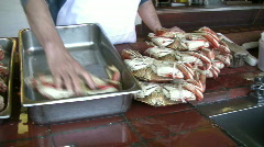 Loading Crabs into Metal Container Stock Footage
