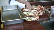 Stock Video Footage of Loading Crabs into Metal Container