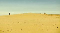 Man in desert - stock footage