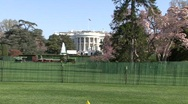 White House Stock Footage
