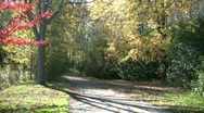 Stock Video Footage of Beautiful autumn scenic of a sunny walking trail (High Definition)