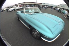 Blue maco corvette  Stock Footage