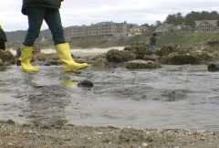 Walking in Tide Pool Stock Footage