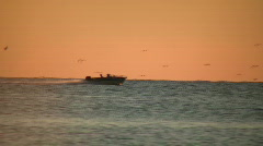 Motor boat speeds down the lake at sunset (High Definition) Stock Footage