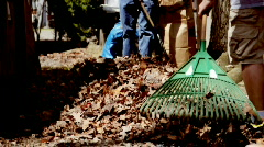 Homeowners Raking Leaves  Stock Footage