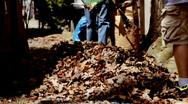 Homeowners Raking Leaves  Stock Footage