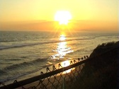 Stock Video Footage of nice beach sunset