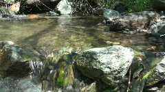 Stream, creek ,water Stock Footage